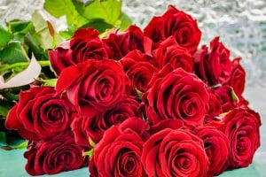 19 roses bouquets 1