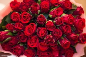 51 roses bouquets 1