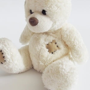 send teddy bear in Ukraine 3